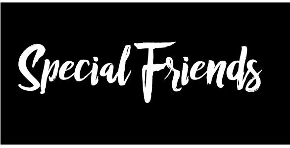 Netzwerk - Special Friends - PollPlonus